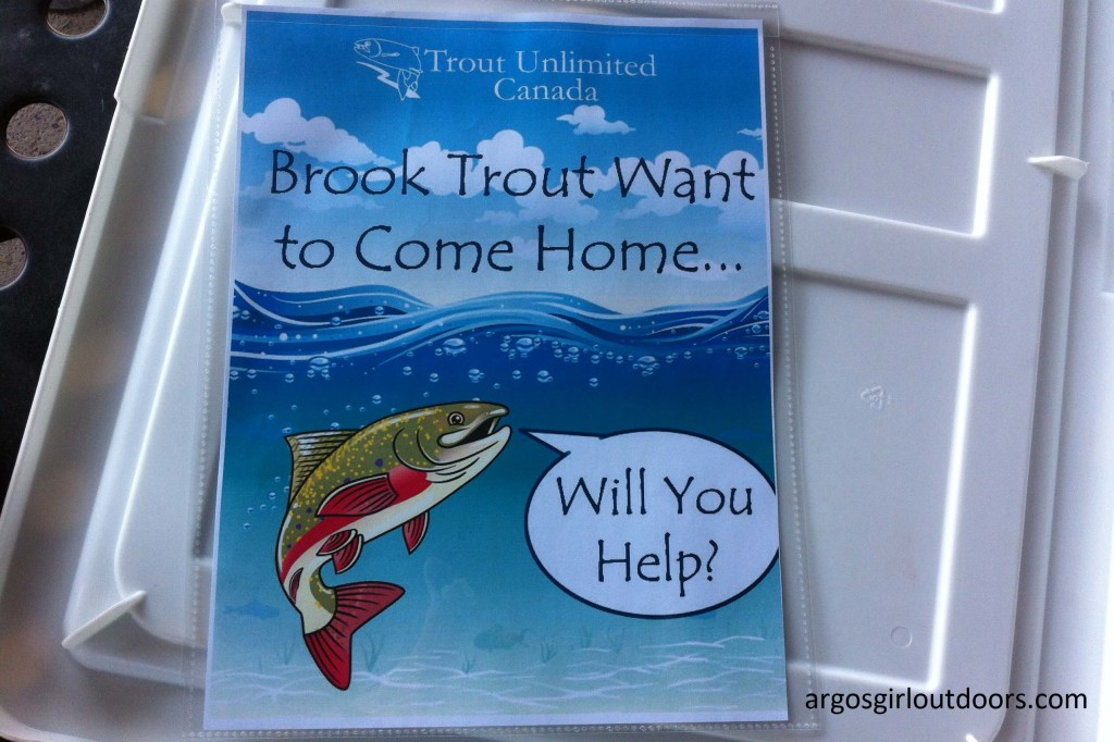 "This new project is called ""Brook Trout Want To Come Home""."